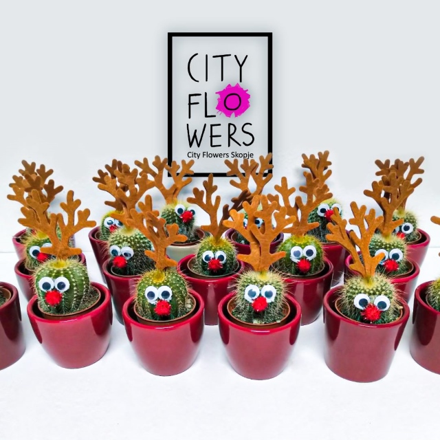 City-Flowers